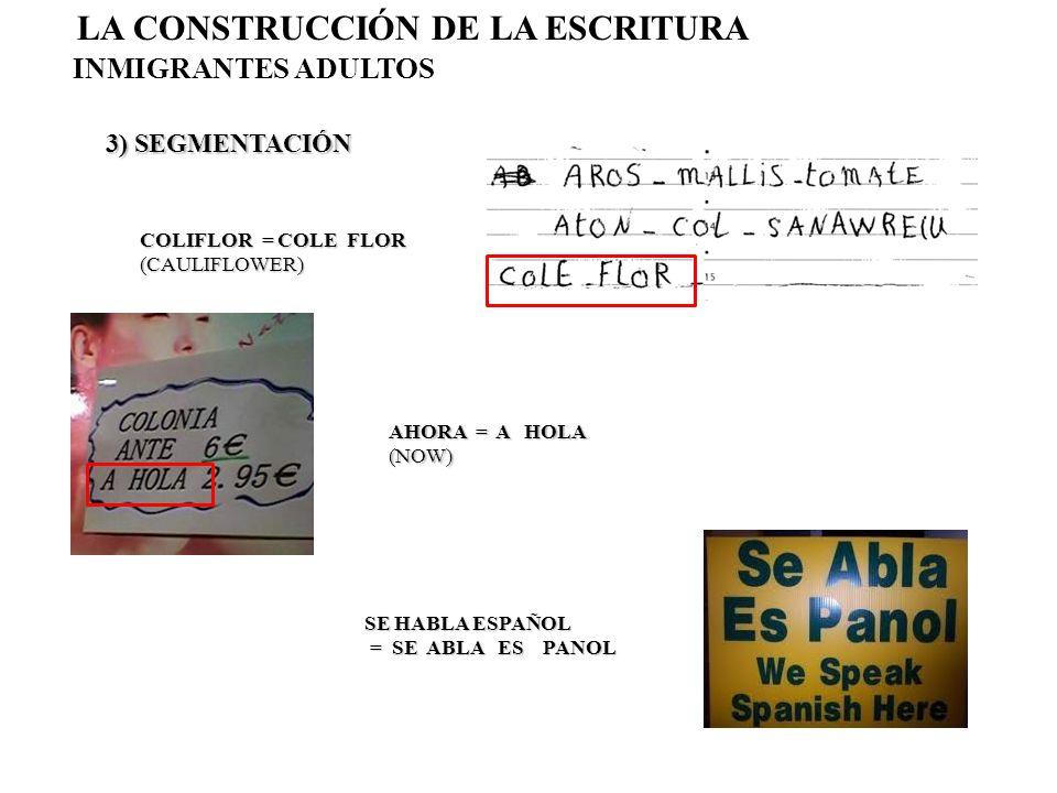 3) SEGMENTACIÓN LA CONSTRUCCIÓN DE LA ESCRITURA INMIGRANTES ADULTOS COLIFLOR = COLE FLOR (CAULIFLOWER) AHORA = A HOLA (NOW) SE HABLA ESPAÑOL = SE ABLA