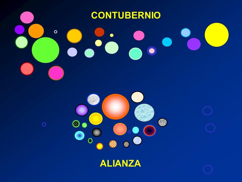 CONTUBERNIO ALIANZA