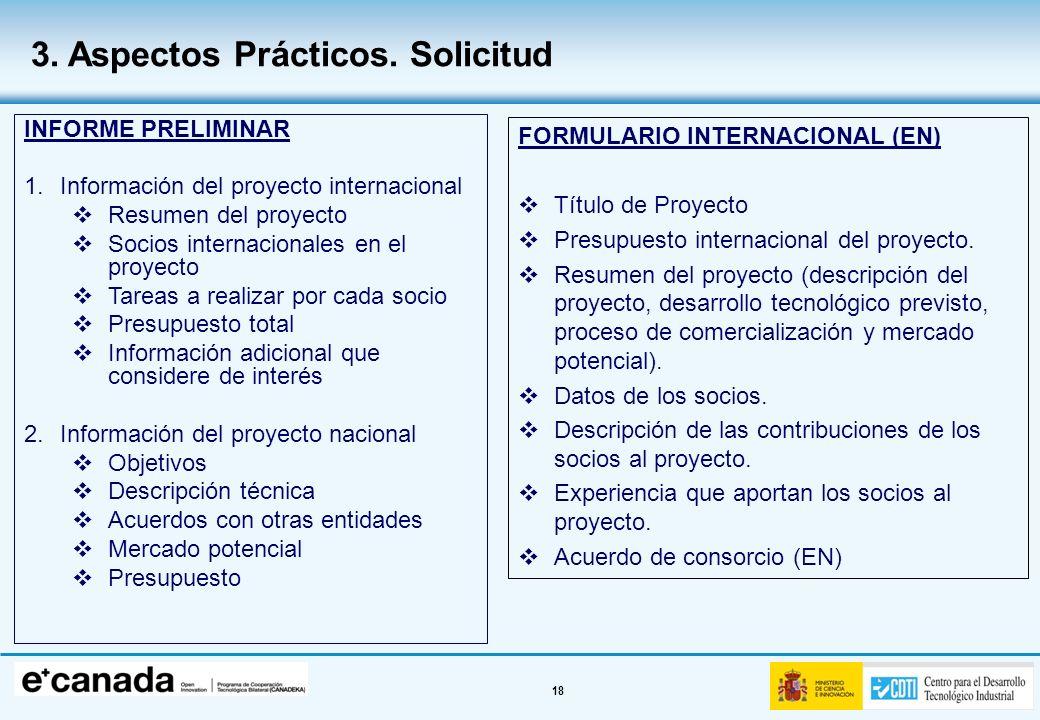 18 INFORME PRELIMINAR 1.Información del proyecto internacional Resumen del proyecto Socios internacionales en el proyecto Tareas a realizar por cada s