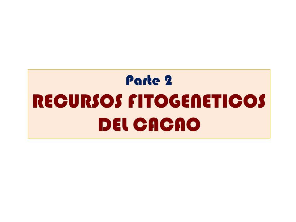 Parte 2 RECURSOS FITOGENETICOS DEL CACAO