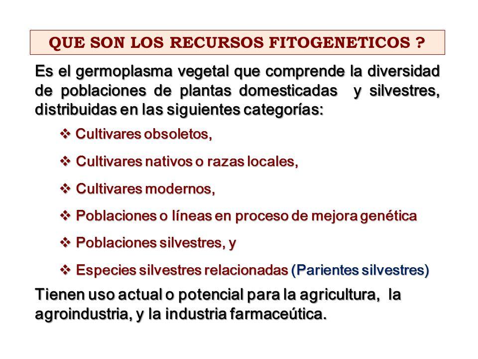 Es el germoplasma vegetal que comprende la diversidad de poblaciones de plantas domesticadas y silvestres, distribuidas en las siguientes categorías: