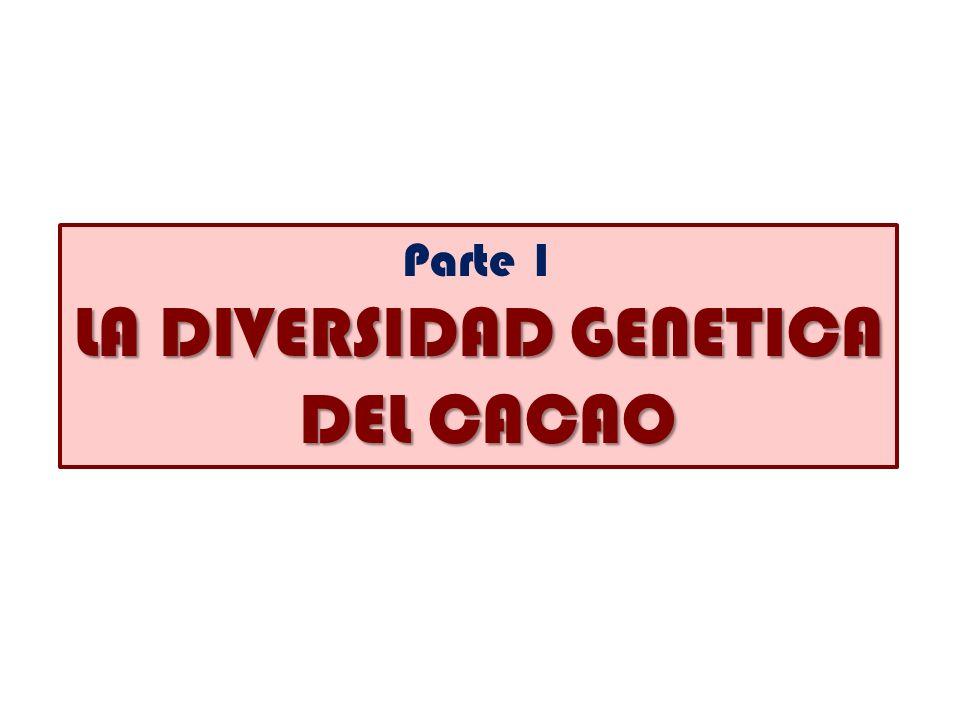 Parte 1 LA DIVERSIDAD GENETICA DEL CACAO DEL CACAO