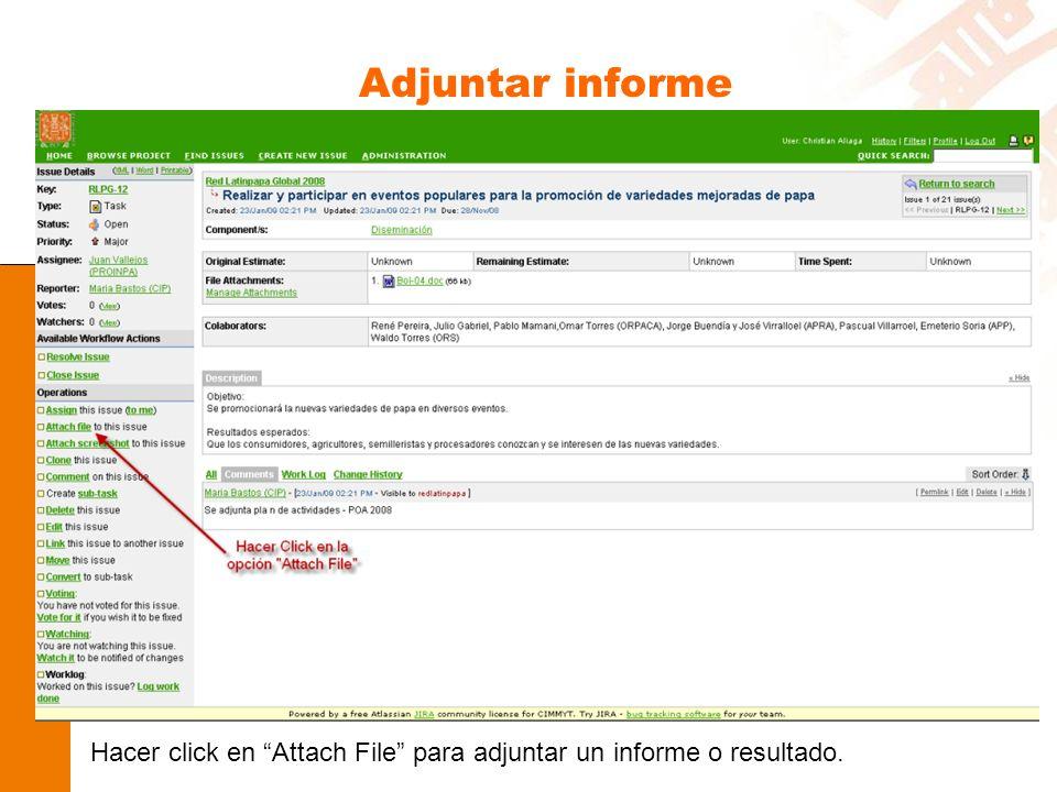 Adjuntar informe Hacer click en Attach File para adjuntar un informe o resultado.