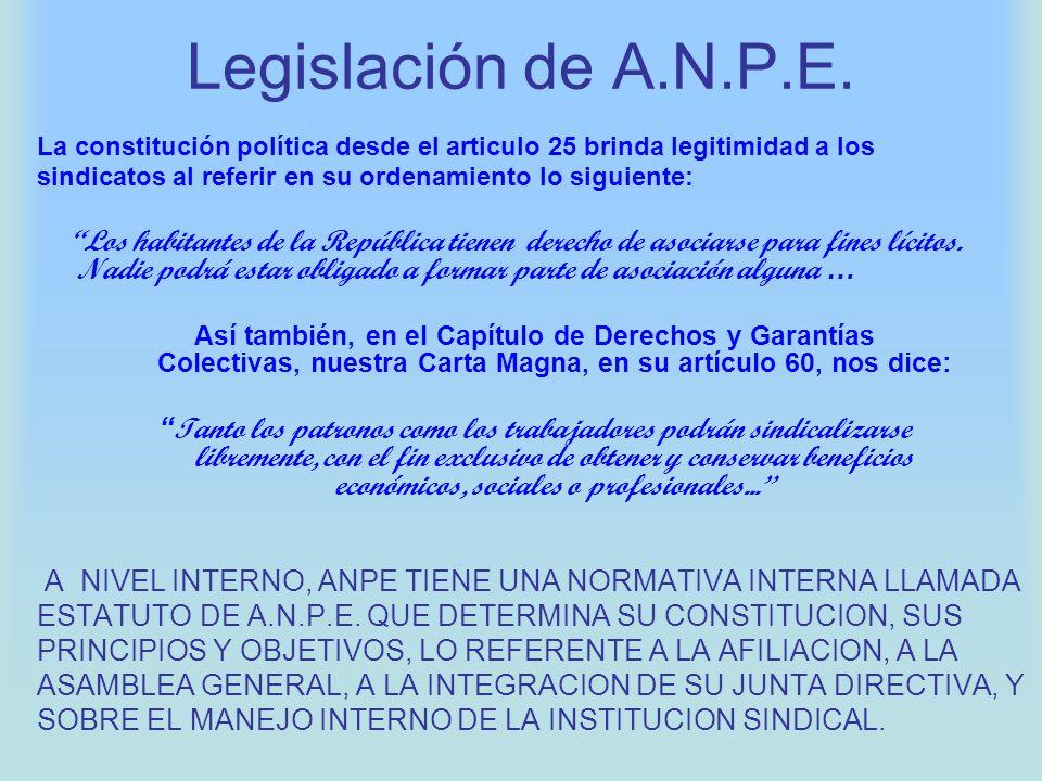 Legislación de A.N.P.E. La constitución política desde el articulo 25 brinda legitimidad a los sindicatos al referir en su ordenamiento lo siguiente: