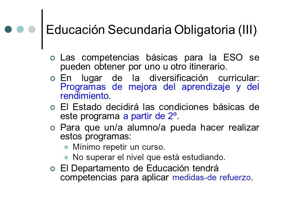 Educación Secundaria Obligatoria (III) Las competencias básicas para la ESO se pueden obtener por uno u otro itinerario. En lugar de la diversificació