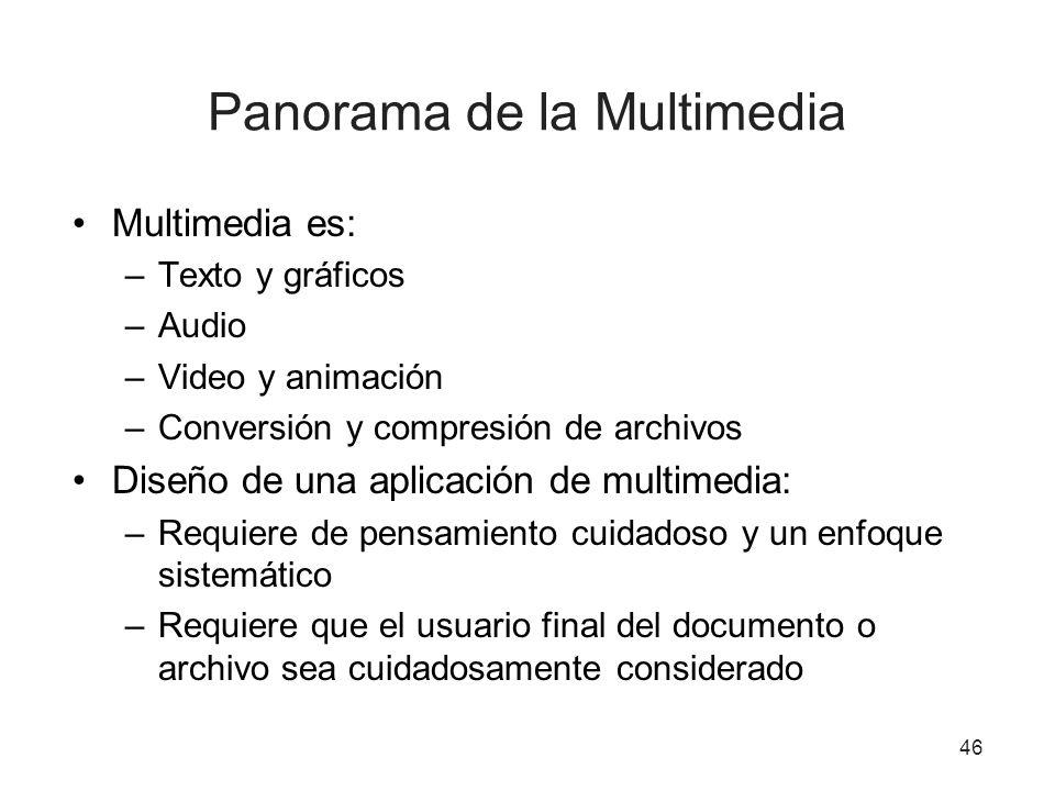 Panorama de la Multimedia Multimedia es: –Texto y gráficos –Audio –Video y animación –Conversión y compresión de archivos Diseño de una aplicación de