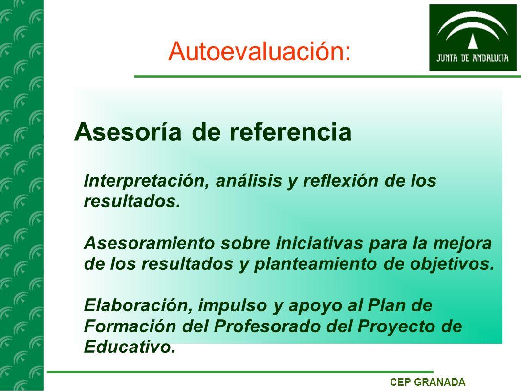 CEP GRANADA Autoevaluación: Asesoría de referencia Interpretación, análisis y reflexión de los resultados.