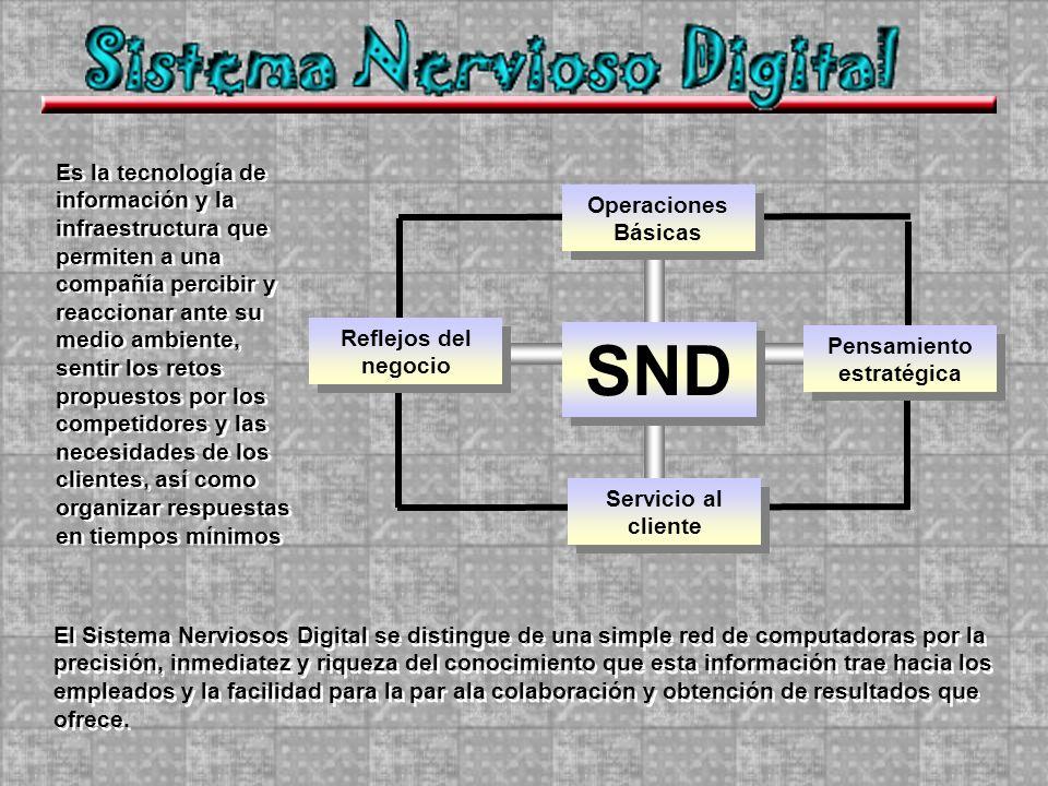 Operaciones Básicas Servicio al cliente Pensamiento estratégica Reflejos del negocio SND Es la tecnología de información y la infraestructura que perm