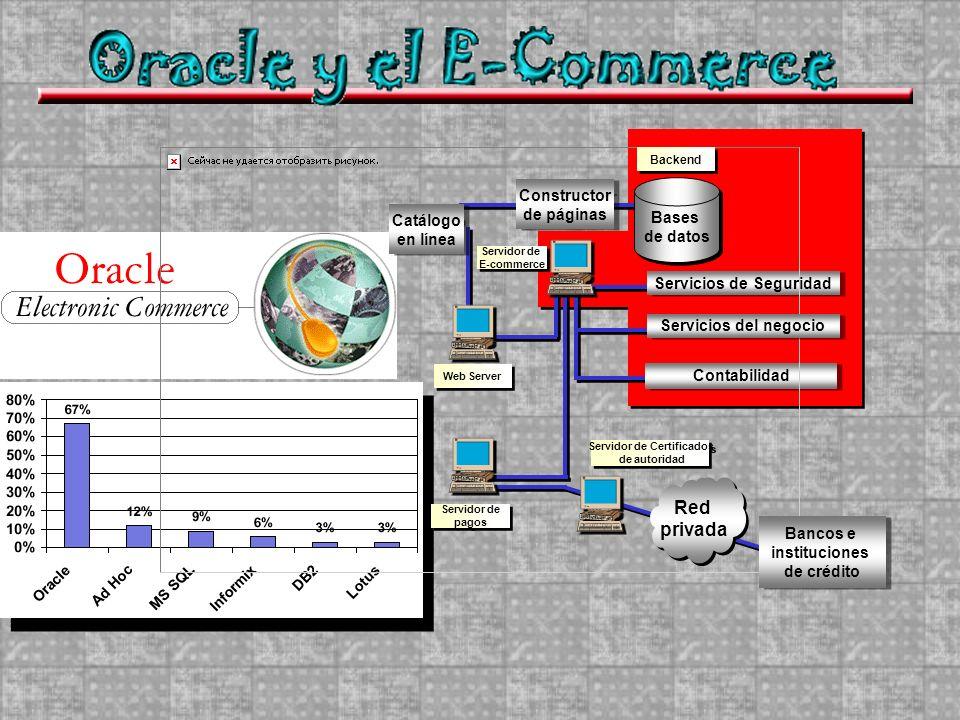 Catálogo en línea Catálogo en línea Constructor de páginas Constructor de páginas Bases de datos Bases de datos Servicios de Seguridad Contabilidad We