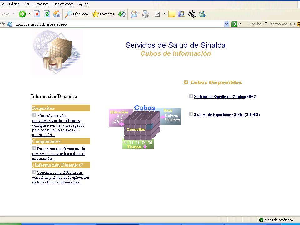 19 Subsecretaría de Innovación y Calidad Dirección General de Información en Salud
