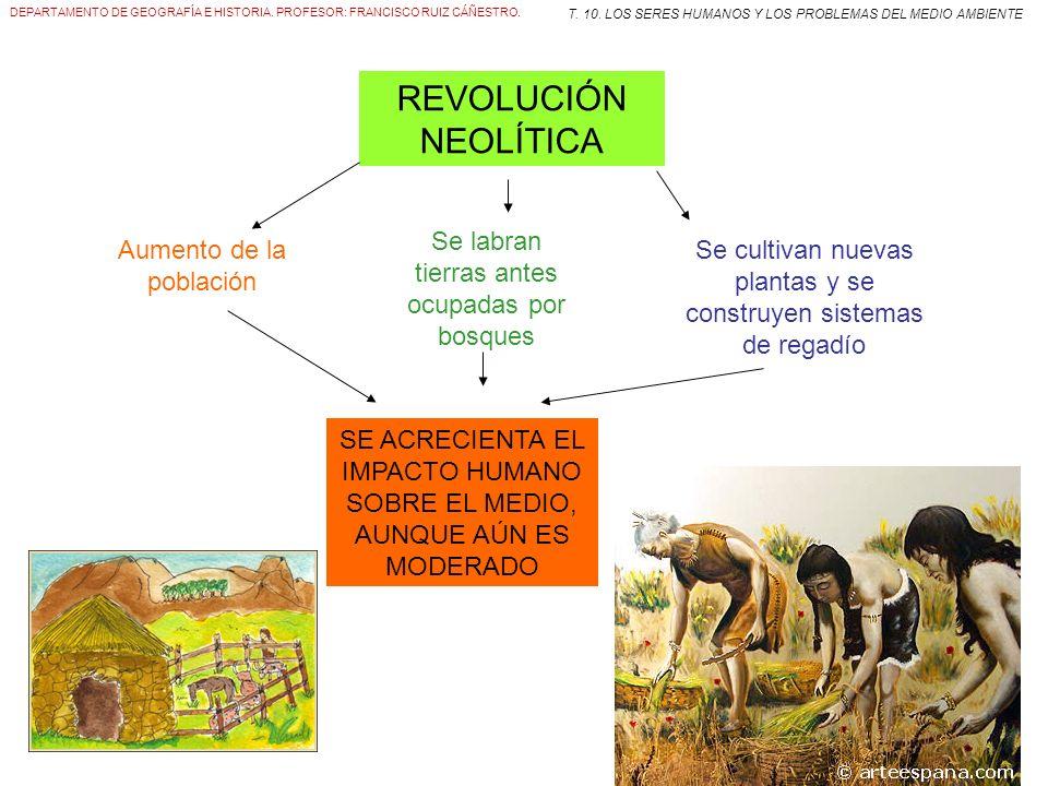 DEPARTAMENTO DE GEOGRAFÍA E HISTORIA. PROFESOR: FRANCISCO RUIZ CÁÑESTRO. T. 10. LOS SERES HUMANOS Y LOS PROBLEMAS DEL MEDIO AMBIENTE REVOLUCIÓN NEOLÍT