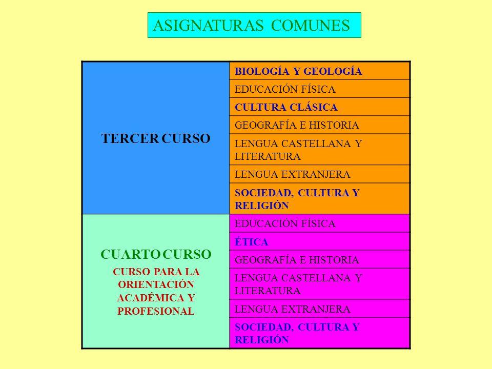 ASIGNATURAS COMUNES TERCER CURSO BIOLOGÍA Y GEOLOGÍA EDUCACIÓN FÍSICA CULTURA CLÁSICA GEOGRAFÍA E HISTORIA LENGUA CASTELLANA Y LITERATURA LENGUA EXTRA