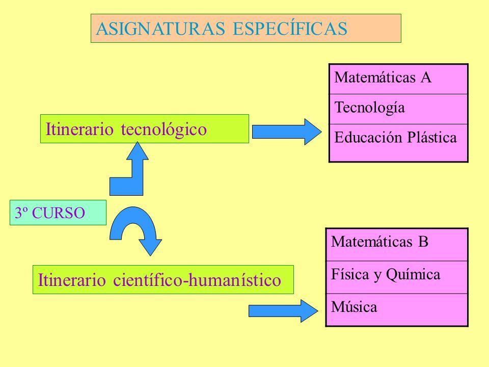 ASIGNATURAS ESPECÍFICAS 3º CURSO Itinerario tecnológico Itinerario científico-humanístico Matemáticas A Tecnología Educación Plástica Matemáticas B Fí