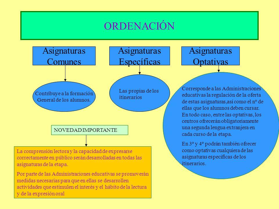 ORDENACIÓN Asignaturas Comunes Asignaturas Específicas Asignaturas Optativas Contribuye a la formación General de los alumnos. Las propias de los itin
