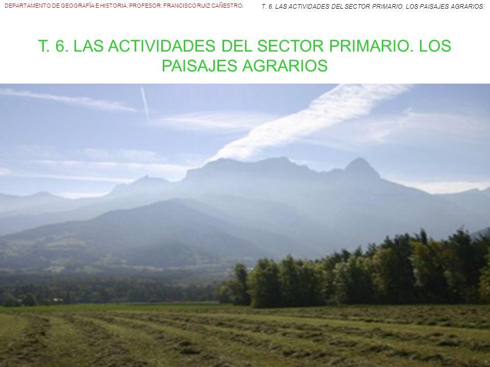 ÍNDICE 1.EL SECTOR PRIMARIO Y SUS ESPACIOS. 2. LA ACTIVIDAD AGRARIA.