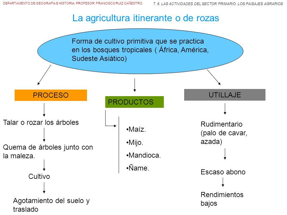 DEPARTAMENTO DE GEOGRAFÍA E HISTORIA. PROFESOR: FRANCISCO RUIZ CAÑESTRO.