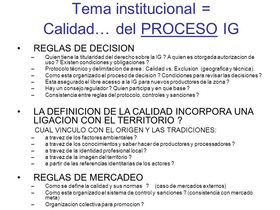 Tema institucional = Calidad… del PROCESO IG REGLAS DE DECISION –Quien tiene la titularidad del derecho sobre la IG ? A quien es otorgada autorizacion