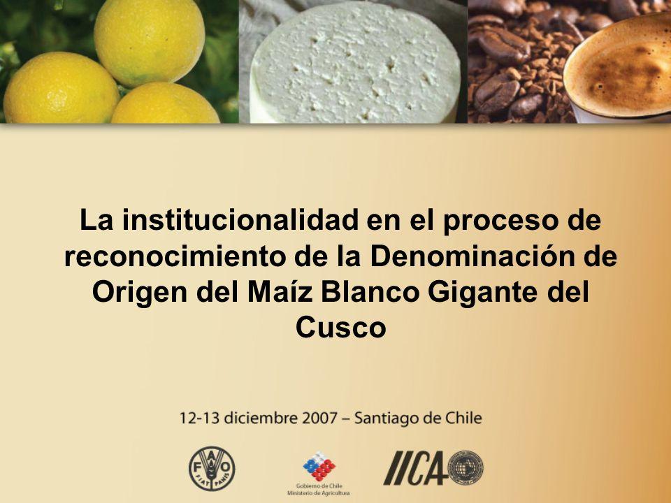 La institucionalidad en el proceso de reconocimiento de la Denominación de Origen del Maíz Blanco Gigante del Cusco
