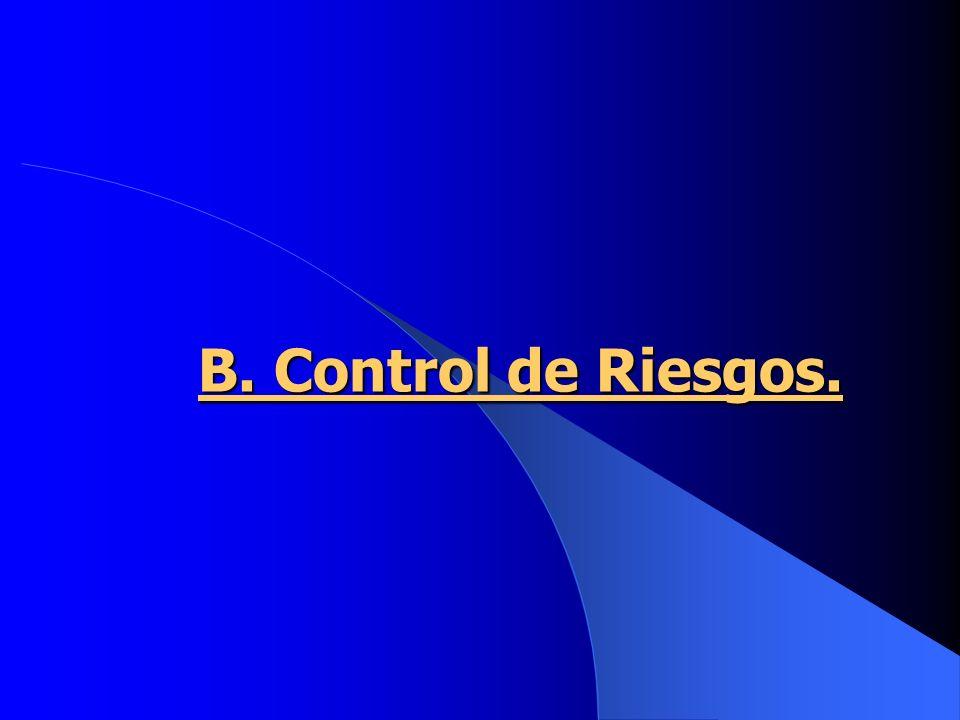B. Control de Riesgos.