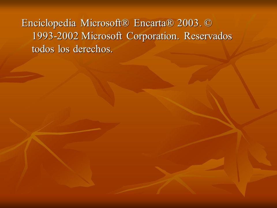 Enciclopedia Microsoft® Encarta® 2003. © 1993-2002 Microsoft Corporation. Reservados todos los derechos.