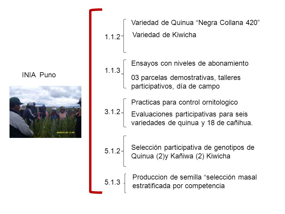 CIRNMA 2.1.4 3.2.1 7.2.1 7.3.3 Evaluación e intervención con tres grupos de estudiantes con riesgo nutricional Capacitacion a madres de familia en aspectos nutricionales Talleres en producción orgánica El aporte de los granos andinos en la nutricion (Perú y Bolivia) ECAs: Talleres, transformación para valor agregado y nutrición