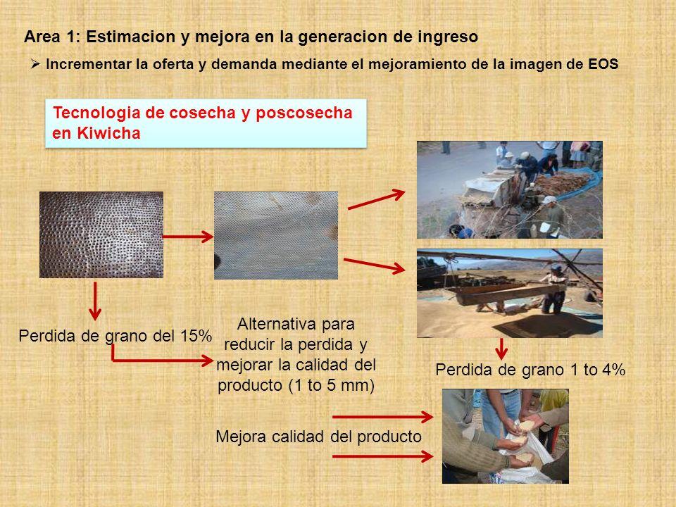 Desarrollo de tecnologia - Quinoa A nueva variedad de quínua: INIA 420 NEGRA COLLANA Enfermedades (tolerante) Heladas (tolerant) Grano: Negro Rdto: 1.8 t/ha Proteina: 18% Enfermedades (tolerante) Heladas (tolerant) Grano: Negro Rdto: 1.8 t/ha Proteina: 18% Area 1: Estimacion y mejora en la generacion de ingreso Incrementar la oferta y demanda mediante el mejoramiento de la imagen de EOS