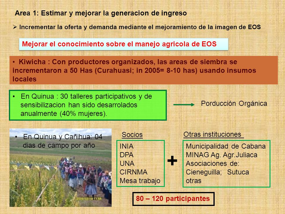 Area 2: Estimacion y mejora del rol de la nutricion Considerar el valor nutricional de EOS en areas prioritarias Determinacion de concentracion de fitatos en Granos Andinos Granos Andinos Concentracion (%) MinMax.