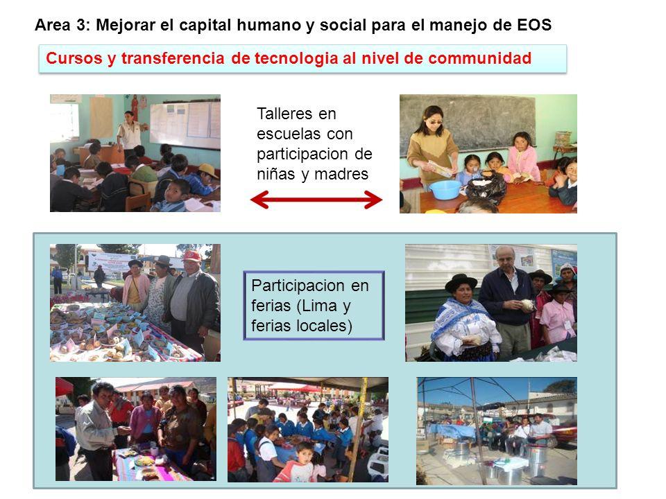 Identificar procedimientos y buenas practicas Area 4: Analisis del rol del turismo en la promocion de EOS En Puno, en coordinacion con OCUDEP (Italia), dos miembros de la comunidad de Luquina viajaron a Ecuador (Runa Tupari - Cotacachi) a un intercambio de experiencias sobre turismo rural (2008) En Cusco: con la Municipalidad de Mollepata se discutió la opción para promover el turismo basado en la agro biodiversidad de Kiwicha.