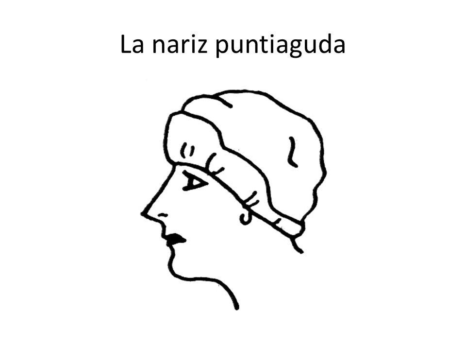 La nariz puntiaguda