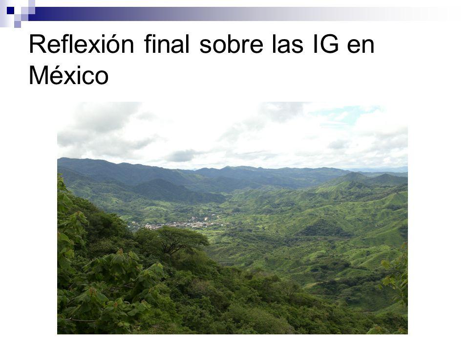 Reflexión final sobre las IG en México