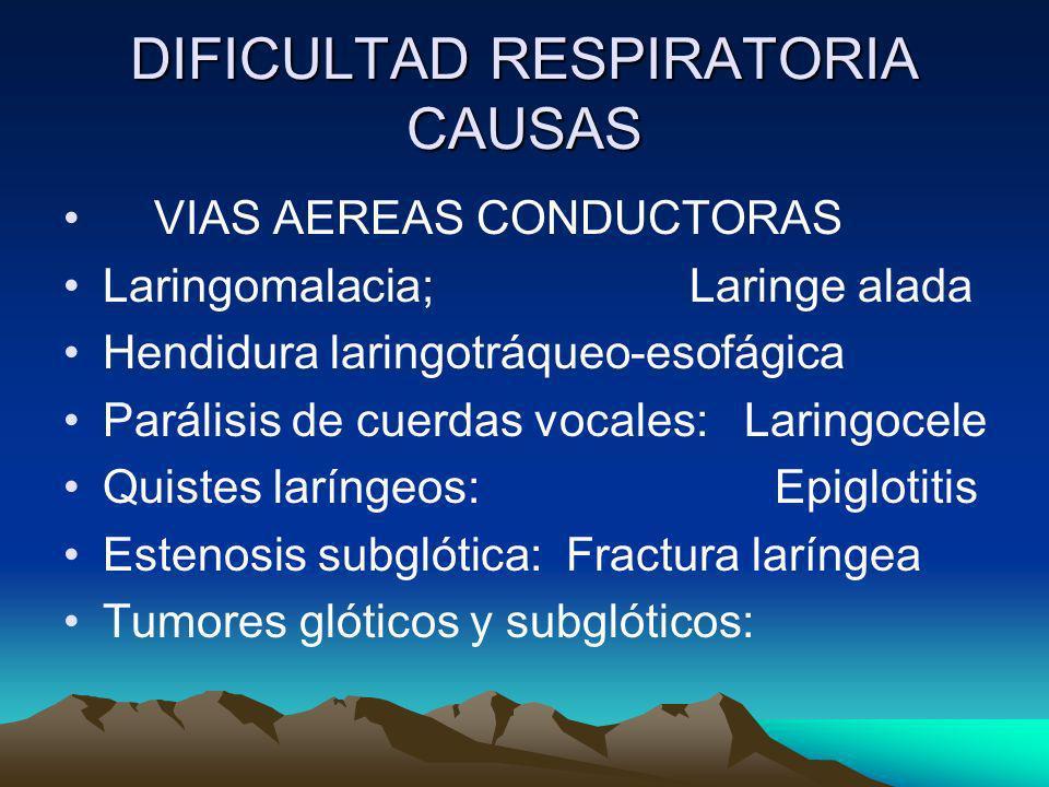 DIFICULTAD RESPIRATORIA CAUSAS VIAS AEREAS CONDUCTORAS Laringomalacia; Laringe alada Hendidura laringotráqueo-esofágica Parálisis de cuerdas vocales: