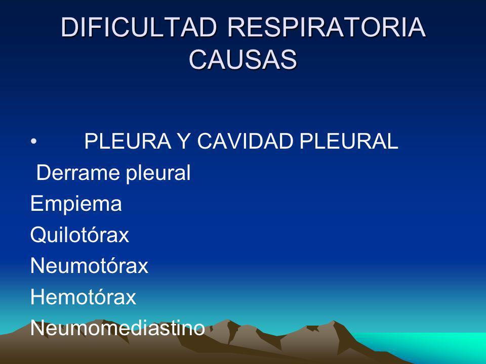 DIFICULTAD RESPIRATORIA CAUSAS PLEURA Y CAVIDAD PLEURAL Derrame pleural Empiema Quilotórax Neumotórax Hemotórax Neumomediastino