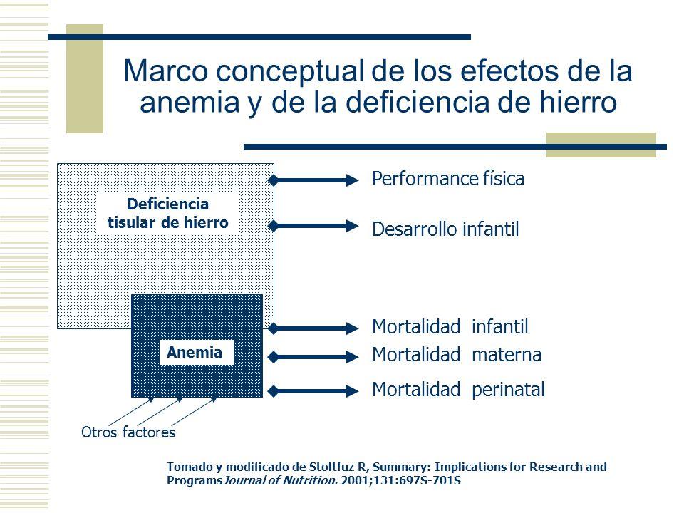 Marco conceptual de los efectos de la anemia y de la deficiencia de hierro Otros factores Deficiencia tisular de hierro Anemia Performance física Desa