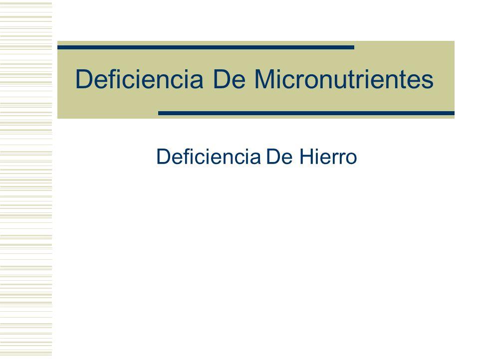 Deficiencia De Micronutrientes Deficiencia De Hierro