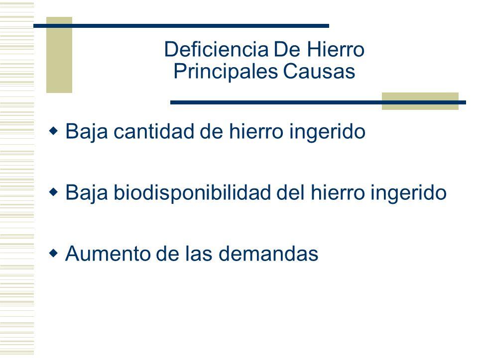Deficiencia De Hierro Principales Causas Baja cantidad de hierro ingerido Baja biodisponibilidad del hierro ingerido Aumento de las demandas