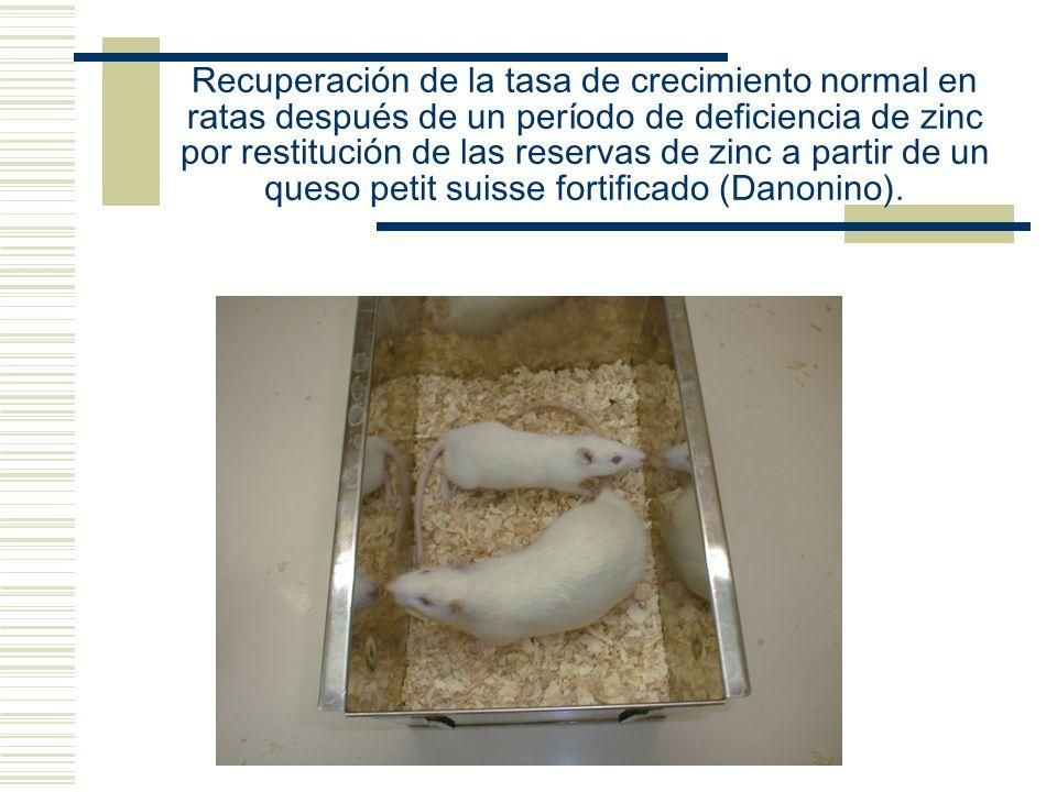Recuperación de la tasa de crecimiento normal en ratas después de un período de deficiencia de zinc por restitución de las reservas de zinc a partir d