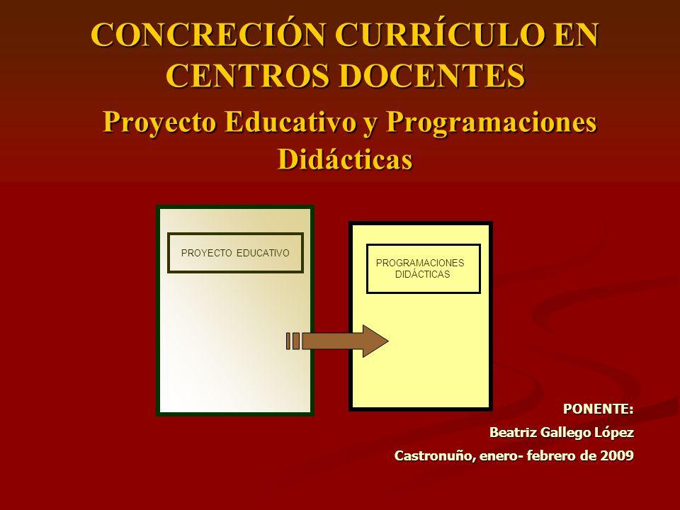 CONCRECIÓN CURRÍCULO EN CENTROS DOCENTES Proyecto Educativo y Programaciones Didácticas PONENTE: Beatriz Gallego López Castronuño, enero- febrero de 2