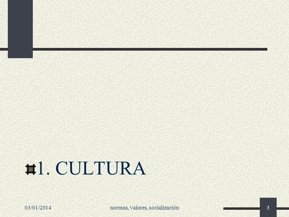 1. CULTURA 03/01/2014normas, valores, socialización3