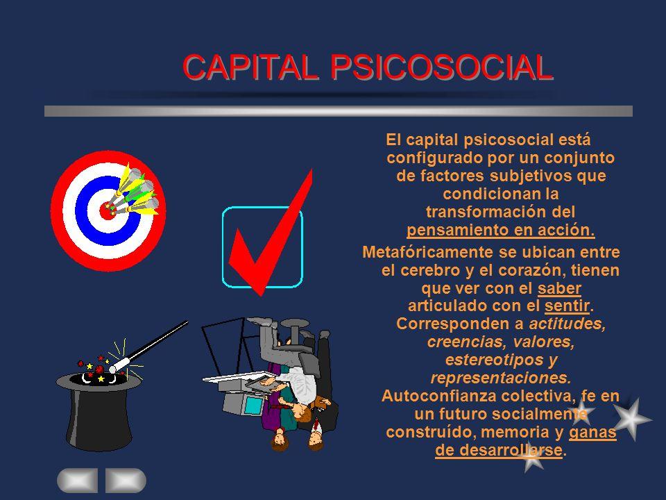 CAPITAL INSTITUCIONAL Consiste en el stock de instituciones (organizaciones en el lenguaje de North) tanto públicas como privadas existentes en la reg