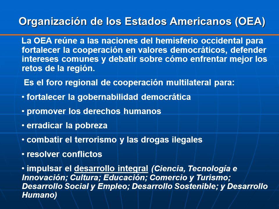 Organización de los Estados Americanos (OEA) La OEA reúne a las naciones del hemisferio occidental para fortalecer la cooperación en valores democráti