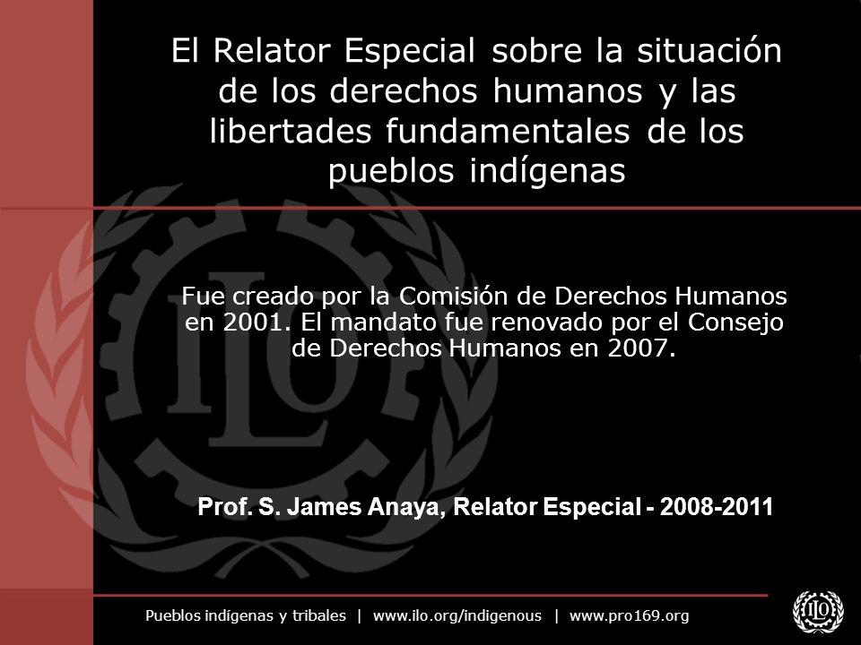 Pueblos indígenas y tribales | www.ilo.org/indigenous | www.pro169.org El Relator Especial sobre la situación de los derechos humanos y las libertades