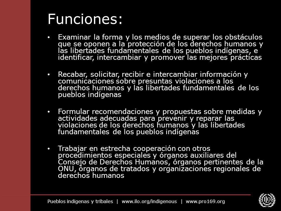 Pueblos indígenas y tribales | www.ilo.org/indigenous | www.pro169.org Funciones: Examinar la forma y los medios de superar los obstáculos que se opon