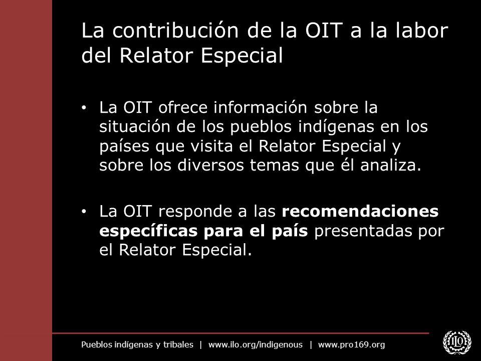Pueblos indígenas y tribales | www.ilo.org/indigenous | www.pro169.org La contribución de la OIT a la labor del Relator Especial La OIT ofrece informa