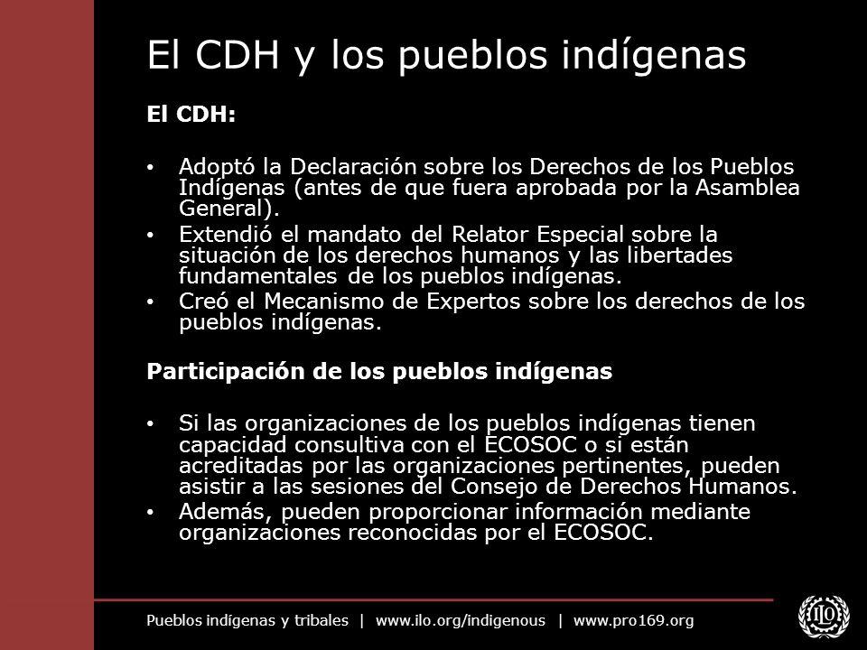 Pueblos indígenas y tribales | www.ilo.org/indigenous | www.pro169.org El CDH y los pueblos indígenas El CDH: Adoptó la Declaración sobre los Derechos