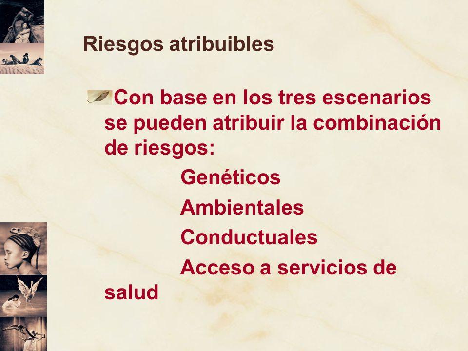 Riesgos atribuibles Con base en los tres escenarios se pueden atribuir la combinación de riesgos: Genéticos Ambientales Conductuales Acceso a servicio