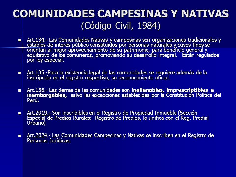 COMUNIDADES CAMPESINAS Y NATIVAS (Código Civil, 1984) Art.134.- Las Comunidades Nativas y campesinas son organizaciones tradicionales y estables de in