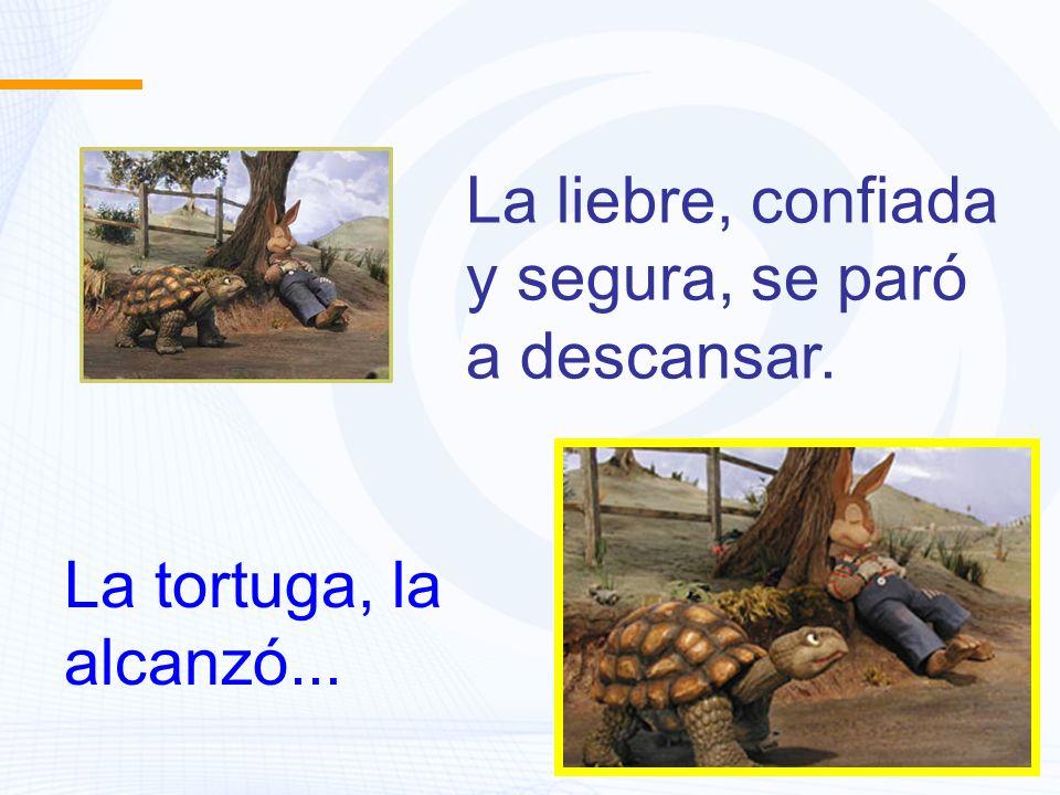 La tortuga, la alcanzó... La liebre, confiada y segura, se paró a descansar.