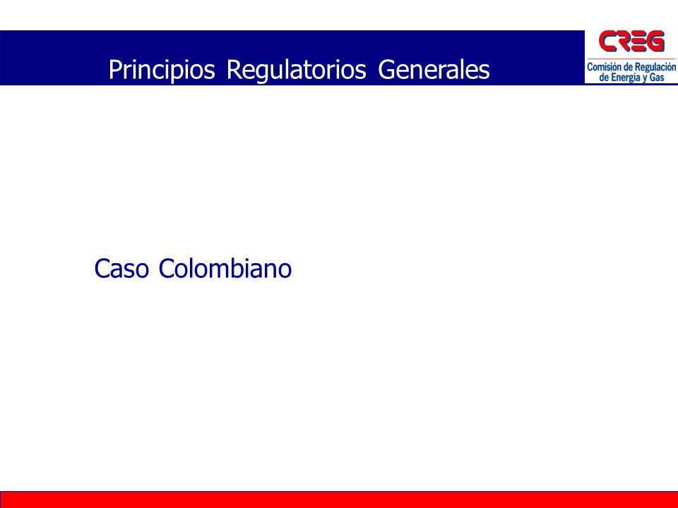 Caso Colombiano Principios Regulatorios Generales