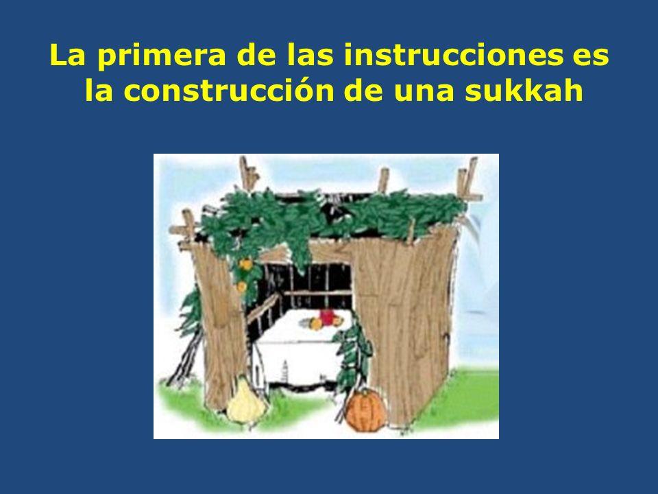 La primera de las instrucciones es la construcción de una sukkah
