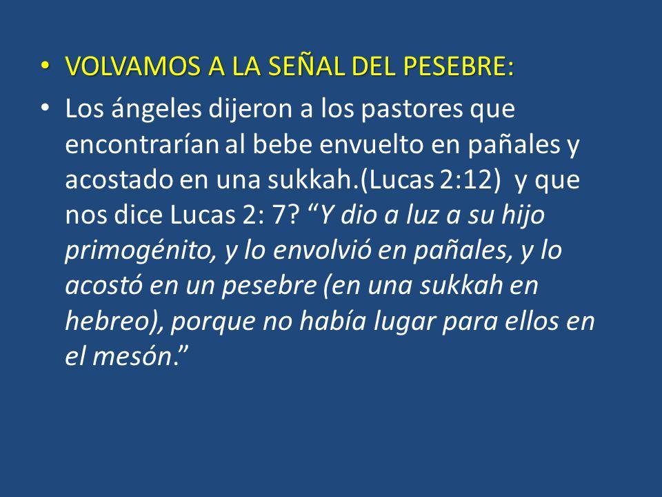 VOLVAMOS A LA SEÑAL DEL PESEBRE: VOLVAMOS A LA SEÑAL DEL PESEBRE: Los ángeles dijeron a los pastores que encontrarían al bebe envuelto en pañales y acostado en una sukkah.(Lucas 2:12) y que nos dice Lucas 2: 7.